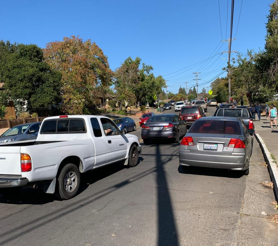 Traffic Chaos for Novato Students