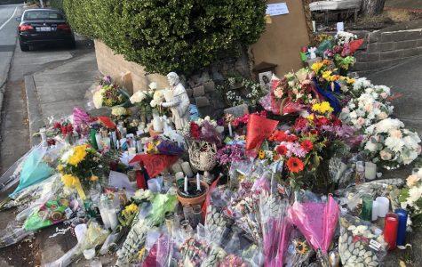 Tragic San Marin Car Crash Shakes Community