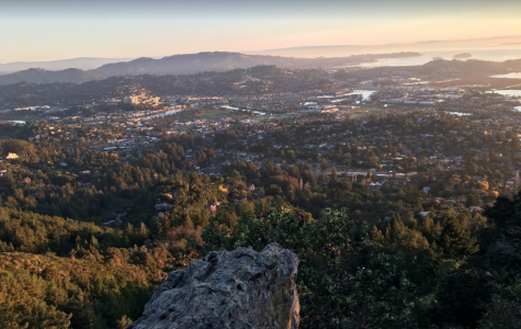 Exploring the Hidden Gems of Marin County